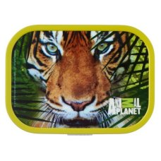 Lunchbox Campus Midi Animal Planet Tiger Green