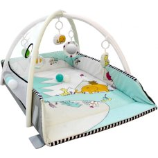 Tryco 5-in-1 Ball Play Activity Gym Lovely Park